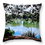 Lake Hamilton Throw Pillow
