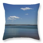 Lake Hartwell Throw Pillow