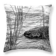 Lake Huron Shoreline 10 Bw Throw Pillow
