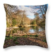 Lake In Early Springtime Woodland Throw Pillow