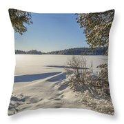 Lake In Winter Throw Pillow