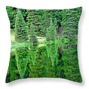 Lake Irene 12-1 Throw Pillow