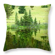 Lake Irene 12-2 Throw Pillow