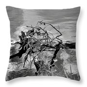 Lake Irene 12-4 Throw Pillow