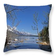 Lake Jenny Throw Pillow