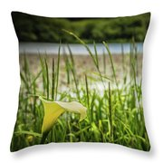 Lake Lily Throw Pillow