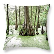 Lake Martin Swamp Throw Pillow