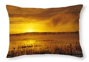 Lake Massabesic - Auburn New Hampshire Usa Throw Pillow