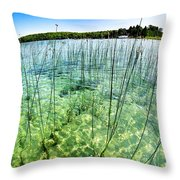 Lake Mindemoya Wading In The Reeds Throw Pillow