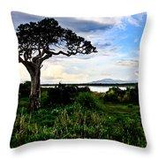 Lake Ndutu Shores Throw Pillow