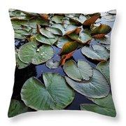 Lake Plant Throw Pillow