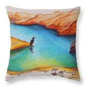 Lake Powell Birds Throw Pillow