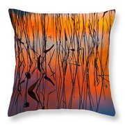 Lake Reeds And Sunset Colors Throw Pillow