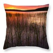 Lake Reeds At Sundown Throw Pillow