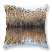 Lake Reflexion Throw Pillow