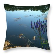 Lake Side Throw Pillow