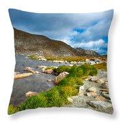 Lake Summit Tundra Path Throw Pillow