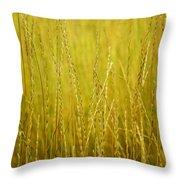 Lake Tahoe Wild Grasses Throw Pillow