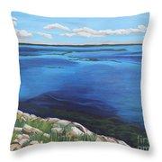Lake Toho Throw Pillow