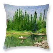 Lake View 1-2 Throw Pillow