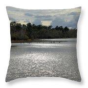 Lake Waccamaw II Throw Pillow