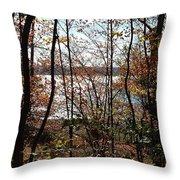 Lake Wallenpaupack Through The Trees Throw Pillow