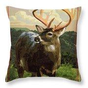 Lake Whitney State Park Throw Pillow