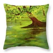 Lake Wilson Hawaii #35 Throw Pillow
