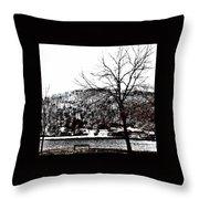 lake Wynona Throw Pillow