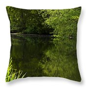 Lake01 Throw Pillow