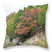 Lake034 Throw Pillow