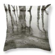 Lakes Edge Throw Pillow