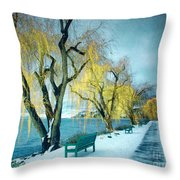 Lakeshore Walkway In Winter Throw Pillow