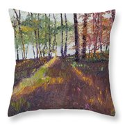 Lakeside Shadows Throw Pillow