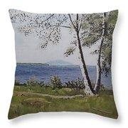 Lakeview Landing Throw Pillow