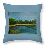 Lakeview Tallahassee Throw Pillow