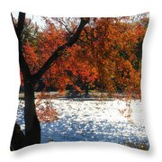 Lakewood Throw Pillow