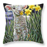 Lamb Collection Throw Pillow