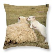 Lamb Jumping On Mom Throw Pillow