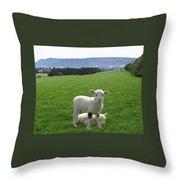 Lambs In Pasture Throw Pillow