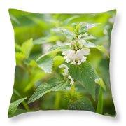 Lamium Album White Flowers Macro Throw Pillow