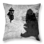 Lamp And Leaf Throw Pillow