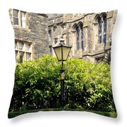 Lamppost In Front Of Green Bushes And Old Walls. Throw Pillow
