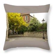 Lamppost On A Street Bend. Throw Pillow