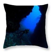 Lanai Arch Throw Pillow