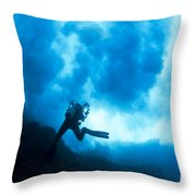 Lanai Diver Throw Pillow