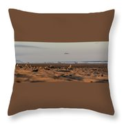 Land, Air, Sea Throw Pillow
