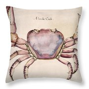 Land Crab Throw Pillow