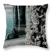 Land Meets Water Nature Photograph Throw Pillow