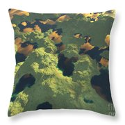 Land Of A Thousand Lakes II Throw Pillow